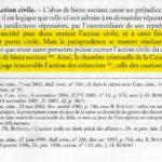 La-Cour-de-cassation-juge-irrecevable-laction-civile-des-actionnaires-daprès-le-livre-de-cours-Droit-pénal-des-affaires-de-BONFILS-1