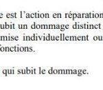 Laction-individuelle-en-responsabilité-civile-contre-les-dirigeants-sociaux-daprès-la-loi-2003-036-