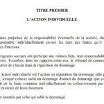Laction-individuelle-en-responsabilité-civile-contre-les-dirigeants-sociaux-daprès-la-loi-2003-036-qui-régit-les-sociétés-commerciales-à-Madagascar-t